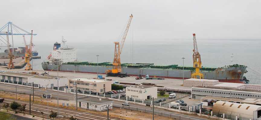 Terminal Tersado do Porto de Setúbal recebe navio da China
