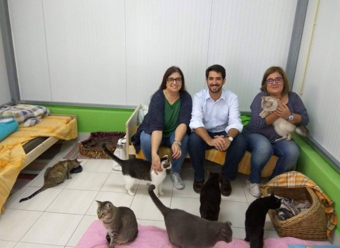 Candidatos do CDS à Câmara Municipal do Barreiro visitam SOS Bicharada